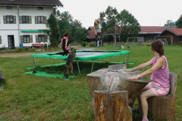 ...lustig am Trampolin...